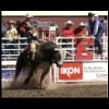 Photos from the Rodeo